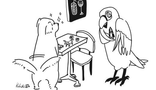 Cafe Riccoという生きているお店 ~対等な関係性と折り紙で生まれるコミュニケーション~